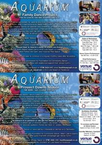 Aquarium Flyers Finals